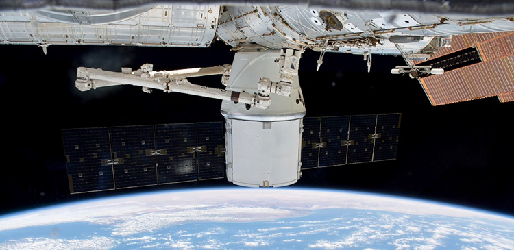 Dragon returns with mice, science samples from ISS